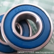 Max type bearing